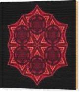Dying Amaryllis IIi Flower Mandala Wood Print