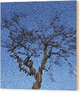 Dynamic Dawn Wood Print