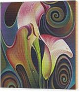 Dynamic Floral 4 Cala Lillies Wood Print