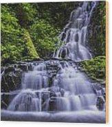Eads Creek Falls Wood Print