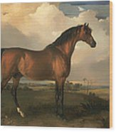 Eagle - A Celebrated Stallion Wood Print