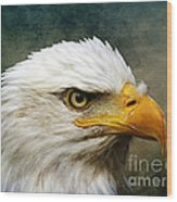 Eagle Art Wood Print