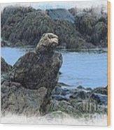 Eagle At Rest Wood Print