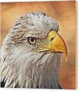 Eagle At Sunset Wood Print