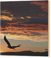 Eagle At Sunset Wood Print by Shane Bechler