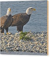 Eagle Couple Wood Print