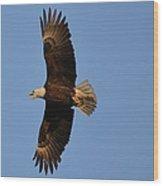 Eagle Flight 4 Wood Print