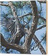 Eagle Flight Prep Wood Print