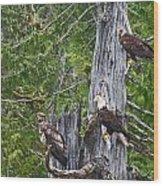 Eagle Gang Wood Print