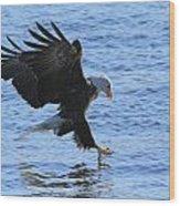 Eagle Grab Wood Print