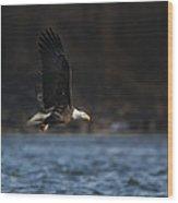 Eagle Ice Glide Wood Print
