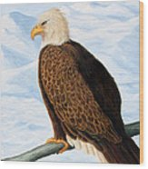 Eagle In Alaska Wood Print by Lorraine Foster