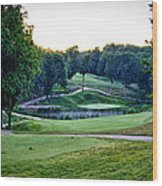 Eagle Knoll - Hole Fourteen From The Tees Wood Print