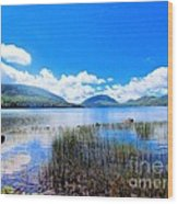 Eagle Lake In Acadia Wood Print