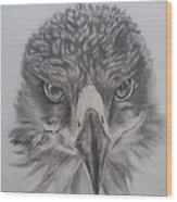Eagle Wood Print by Lucy D