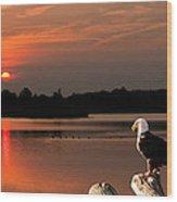 Eagle On Stump Overlooking Water At Sundown Wood Print
