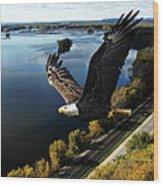 Eagle Over Mississippi  Wood Print