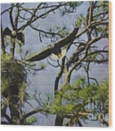 Eagle Pair And Nest Wood Print