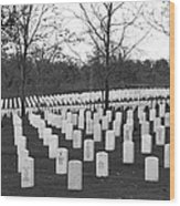 Eagle Point National Cemetery In Black And White Wood Print by Mick Anderson