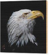 Eagle Portrait II Wood Print
