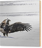 Eagle Prayer Wood Print by RJ Martens