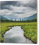 Eagle River Nature Center Wood Print