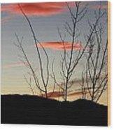 Eagle Sunset Wood Print