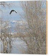Eagle Takes Flight Wood Print