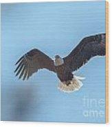Eagle Through The Trees Wood Print