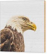 Eagle With Prey Spied Wood Print by Douglas Barnett