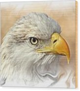 Eagle6 Wood Print by Marty Koch