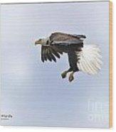 Eaglelanding Approach Wood Print