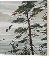 Eagles Eden Wood Print