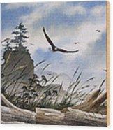 Eagles Home Wood Print