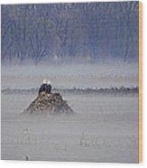 Eagles On Foggy Morning Wood Print