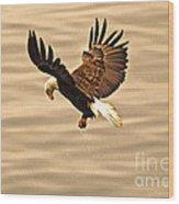 Eagles Pause Wood Print