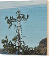 Eagle's View Wood Print
