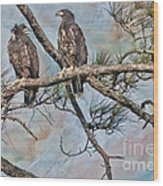 Eaglets In Oil Wood Print