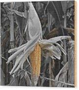 Ear Of Corn Wood Print