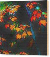Early Autum Wood Print