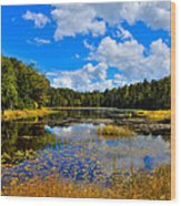 Early Autumn At Fly Pond - Old Forge New York Wood Print