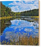 Early Autumn At Fly Pond - Old Forge Ny Wood Print by David Patterson