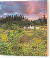 Early Autumn Meadow Sunset At Mt Baker Wood Print