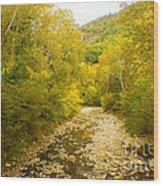Early Autumn On Seneca Creek Wv Wood Print