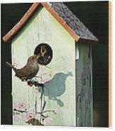 Early Bird Gets The Worm Wood Print by Sharon McLain