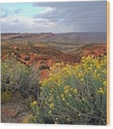 Early Evening Landscape At Arches National Park Wood Print