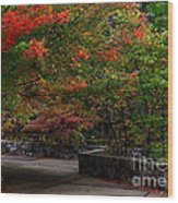 Early Fall At Talimena Park Wood Print