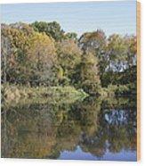 Early Fall In Uw Arboretum Wood Print