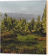 Early Fall On Kebler Pass Wood Print