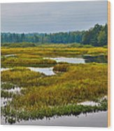 Early Fall On The Moose River - Old Forge New York Wood Print by David Patterson